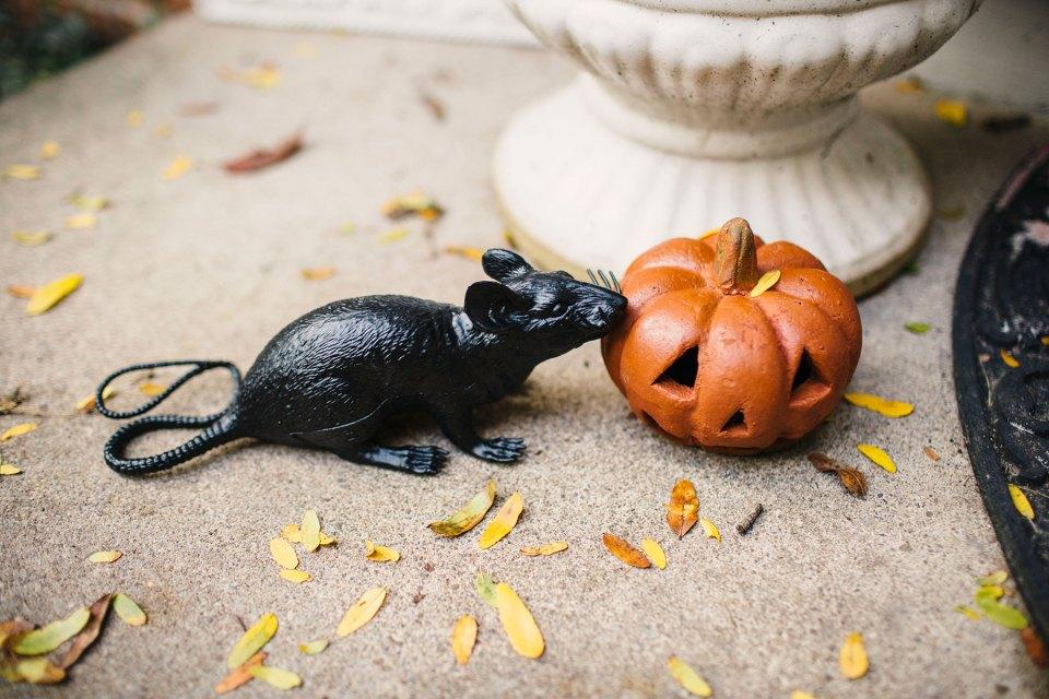 Black-Plastic-Rats-Halloween-Porch-Decorating