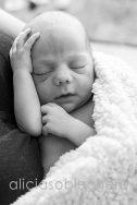 alicia soblechero fotografia bebés
