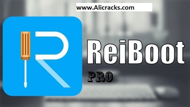 Tenorshare ReiBoot Pro 6.9.5.0 Crack & Serial Key Download