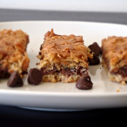coconut chocolate bars {Alida's Kitchen}