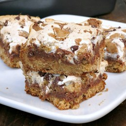 S'mores Blondies | alidaskitchen.com