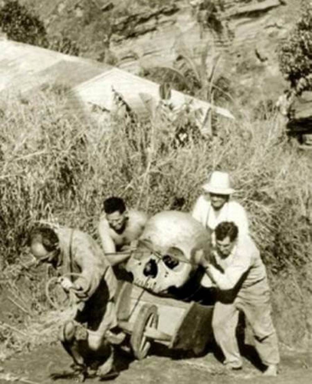 Giant-Skull-Pitcairn Island, New Zealand in1934