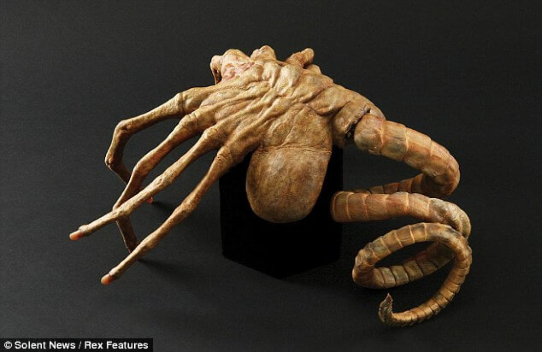 The relic was the inspiration for Ridley Scott's blockbuster film Alien and was seen busting out of a character's chest The relic was the inspiration for Ridley Scott's blockbuster film Alien and was seen busting out of a character's chest