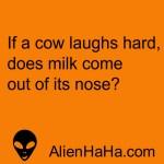 Funny Quote 63 by Alien Ha Ha