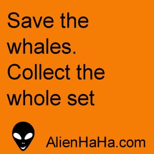 Alien HaHa 50