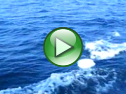 Small White USO orb chases boat of the coast of Sweden [video]