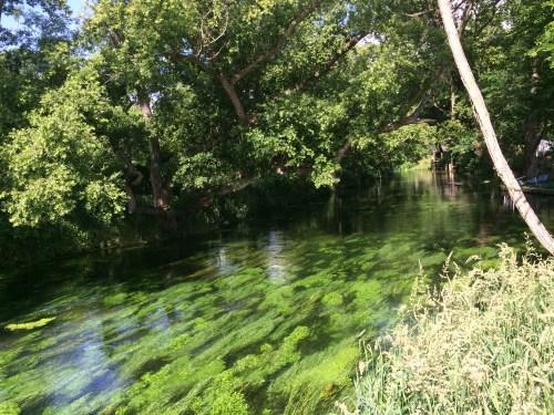 大王わさび村の横の湧き水の川である蓼川と黒澤明監督の映画「夢」に出てきた水車。