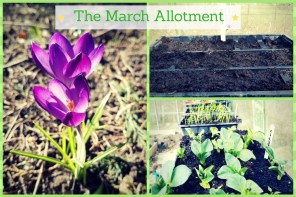 The March Allotment