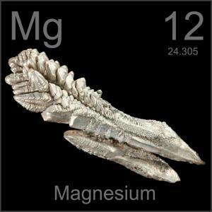 magnesium bone