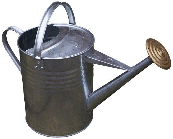 galvanised steel watering can