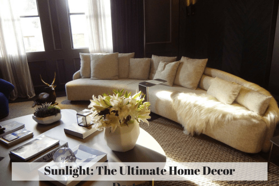 Sunlight: The Ultimate Home Decor Destroyer
