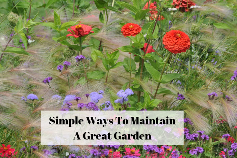 Simple Ways To Maintain A Great Garden