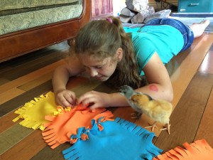 quilt making chick