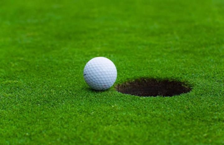 macam macam rumput golf