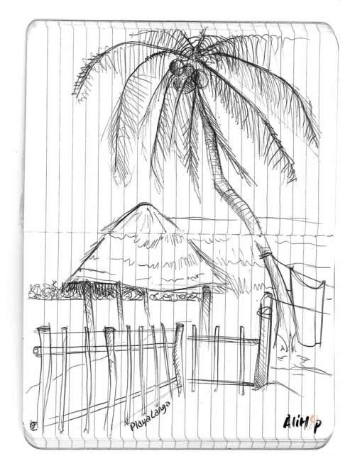 playa-larga-croquis-cuba-alihop
