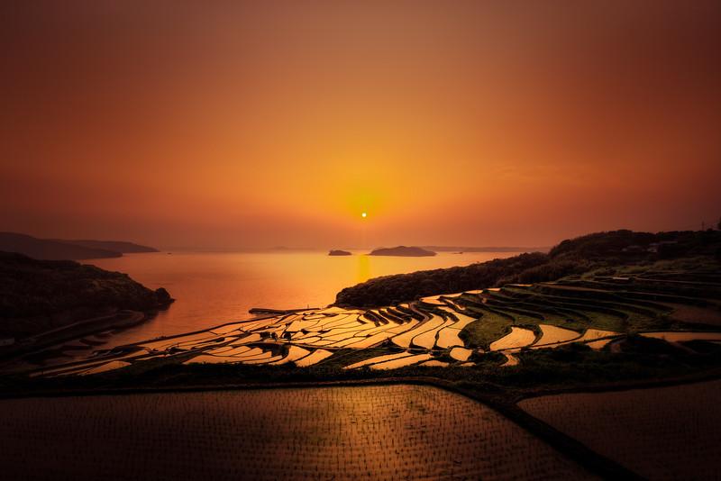 Sun setting at the rice field terrace of Saga Japan.