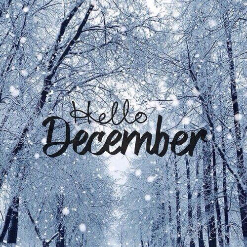 مولود 31 ديسمبر