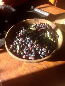 Olives à venir, sinon c'est amertume assurée...