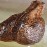 Porque será que han ocultado esta semilla por más de 100 años, si tiene el poder de curar cualquier cáncer en días? Entérate aquí