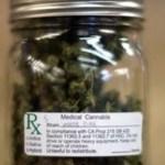Las muertes por analgésico bajaron un 25% en los Estados con la legalización de la Marihuana Medicinal