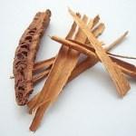 Usos medicinales y aplicaciones curativas de la canela