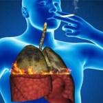 Como desintoxicar tus pulmones en solo 3 días