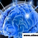 Remedio Popular Para Fortalecer La Memoria