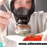 11 Aditivos y conservantes de alimentos que se deben evitar