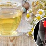 Infección renal: 8 remedios naturales que te servirán de ayuda