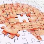El alzhéimer podría empezar a desencadenarse ya desde el desarrollo fetal