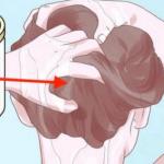 Elimina las canas y combate la caída del cabello con tan solo un ingrediente!