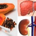 Te Enseñamos a Desintoxicar Hígado y Riñones con Semillas de Papaya