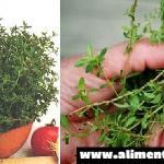 La hierba más potente que destruye los parásitos, las infecciones del tracto urinario y de la vejiga herpes, virus de la gripe, dolores de articulaciones, artritis, ciática, Cándida, vaginitis y más.