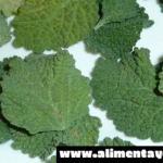 Esta planta cura de forma casi inmediata el hígado, vesícula y desinflama mágicamente los intestinos. Aprende cómo usarla…