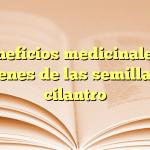 10 beneficios medicinales que obtienes de las semillas de cilantro