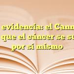 Más evidencia: el Cannabis logra que el cáncer se suicide por sí mismo