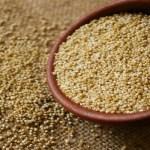 5 semillas que te ayudaran a perder peso.