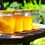 Los estudios revelan: ¡La miel falsa está por todas partes! Aquí está cómo saber la diferencia