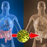 Médicos confirman esta es la planta que puede curar casi de inmediato el hígado, la vesícula y desinflama los intestinos!