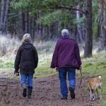 Pasear un perro ayuda a los mayores a cumplir las recomendaciones de ejercicio físico