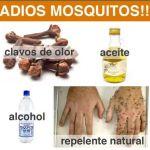 Un repelente casero para deshacerte de los molestos mosquitos
