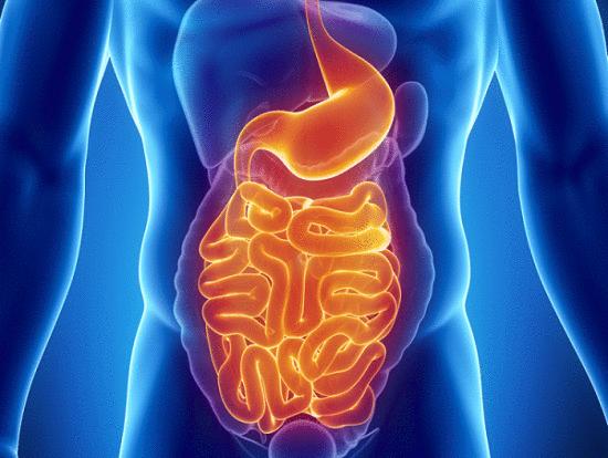 reduce los problemas gastrointestinales <a href=