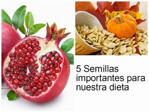 semillas2