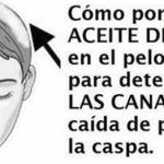Cómo Utilizar El Aceite De Coco En Tu Cabello Para Eliminar las Canas, Debilitamiento o Caída…