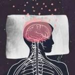 Melatonina: la hormona del sueño y la juventud