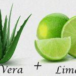 Tu Colon Se Limpia Facil Usando Aloe Vera y Limón De Esta Inexplicable Forma.