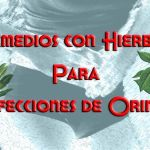 Remedios para Infección de Orina, Caseros con Hierbas Naturales