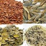 Las 10 Semillas más saludables de la Tierra