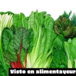 Beneficios de las plantas para el cerebro