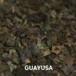 Propiedades, Beneficios y usos de la Guayusa